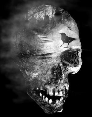 mixed-media skull