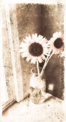 Vintage Sunflowers in Vase