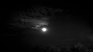 Super-Moon-11-14-16-2